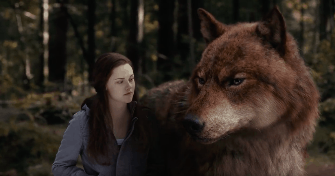 A screen capture of the Twilight movie showing Bella with Jacob (in wolf form) in the woods.